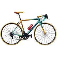 Marco Pantani 20th Anniversary Bianchi Specialissima CV Complete Bike