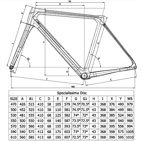 Bianchi Specialissima Disc Geometry