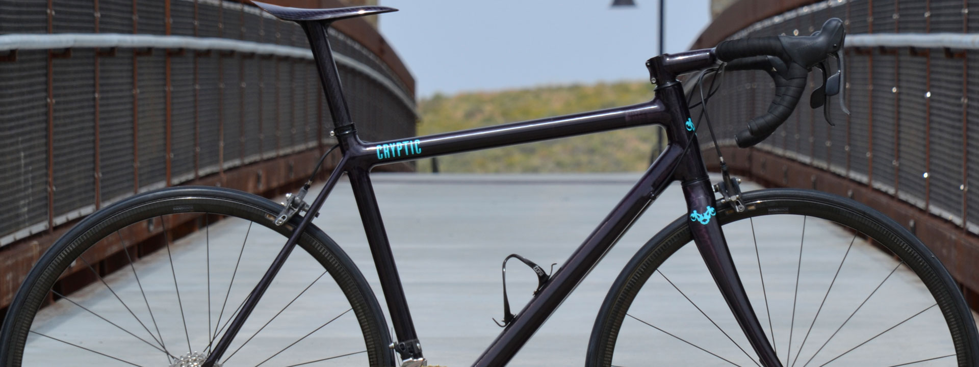 Cryptic Cycles Custom Carbon THM AX-Lightness Complete Bike